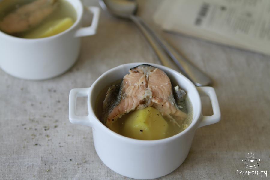 Варить суп до готовности риса. Крупные овощи (морковь, сельдерей и лук) достать и можно выбросить или пюрировать их. Суп из форели разлить по тарелкам и подать к столу. Приятного Вам аппетита.